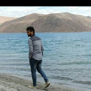 Raj Jain Travel Blogger