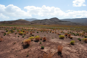 The Roads Less Travelled in Morocco
