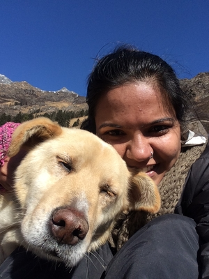 PART II: The universe conspired – Har Ki Doon, trek, the snow and a dog