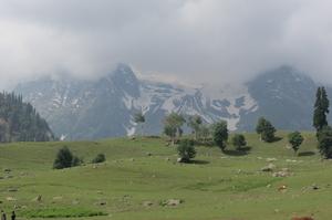 Let's start a journey to Eden Garden: Srinagar