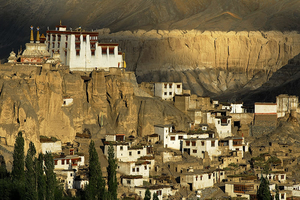 Exotic Moonland Ladakh