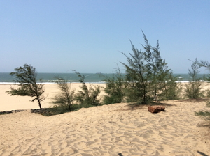 On the beaches of Arabian Sea – April & Me