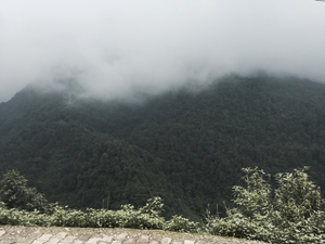 trek to mussorie