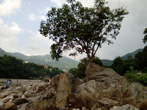 the real bliss- rishikesh