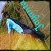 Jayanta J Chowdhury Travel Blogger