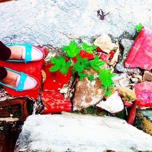 Manasi  Travel Blogger