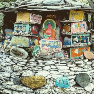 Searching for truth in Mcleodganj