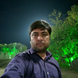 Jay Pipavat Travel Blogger