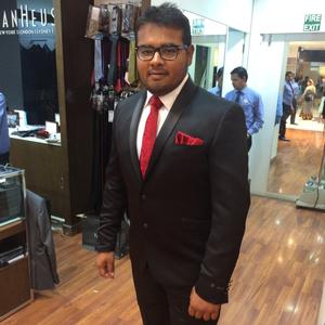 Ronnie Vaishnav  Travel Blogger