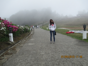 Fiona Waddell Travel Blogger