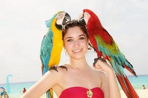 Mayabell Travel Blogger