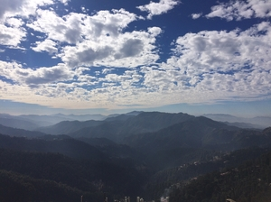 The Capital Hill- Shimla