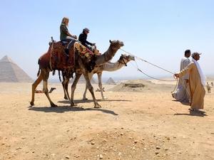 Camel and horse Ride Around The Pyramids