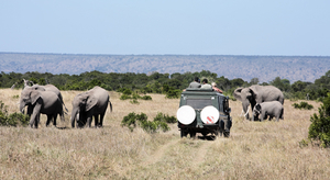 Ultimate Kenyan Safari 6 Nights / 7 Days, starting from ` 119,990 /- per person