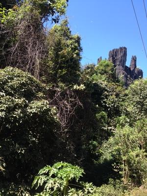 Beauty of Kumta!! (Yana Caves, Mirjan Fort & Vibhooti Falls)