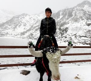 Warimika Travel Blogger