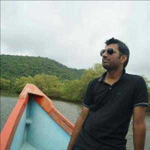 Praveen Kumar Agrawal Travel Blogger
