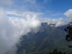 Celestial peace in Coonoor