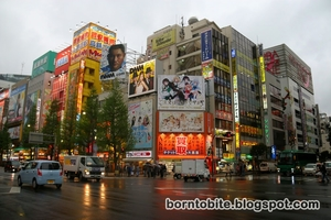 Everything You Should See In Japan