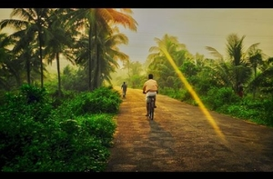Kerala: Magic in the Monsoon