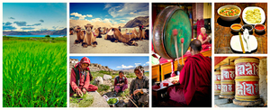 The Great Himalayan Adventure: Ladakh