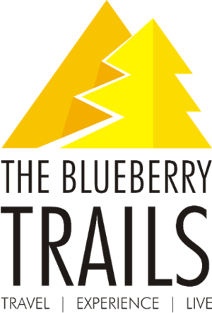 The Blueberry Trails Travel Blogger