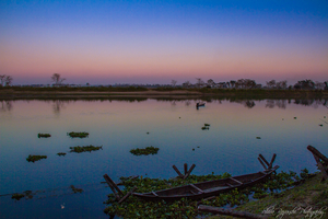 Majuli: Must visit this enchanting island before it disappears