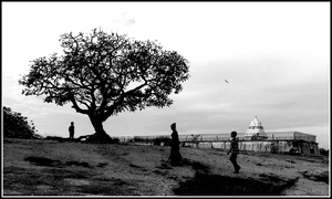 Lalbagh morning walk