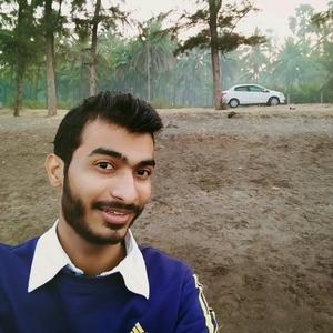 Ankit Patil Travel Blogger