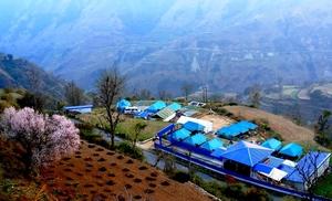 Camping at Koruwa, Uttrakhand