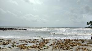 Coastal kochi- Alleppey