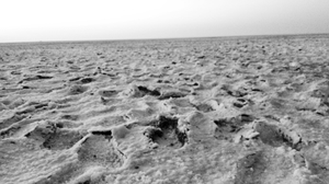 The desert with white beauty called Rann Of Kutch