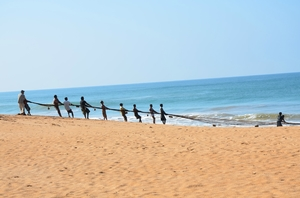 Striding Along The Coast: Sri Lanka