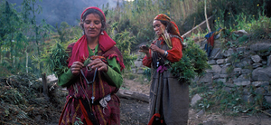 Malana – Epicenter of wild cannabis and an eccentric tribe