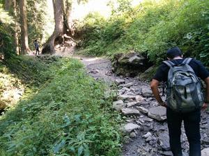 Kheerganga – A heavenly hideout in the mystic woods