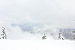 Shimla : Heaven of India
