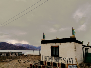 A night in a homestay in Pangong Tso