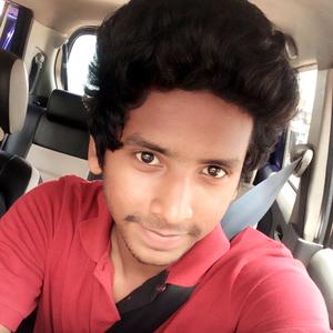Gokul MV Travel Blogger
