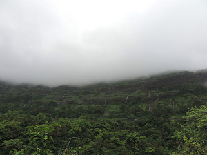 From My Last Monsoon Trek to Bhimashankar