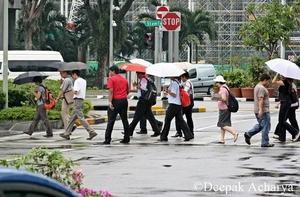 Scintillating Singapore