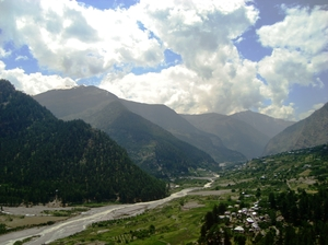 High on Pine and Apple Fragrant Air- Kinnaur