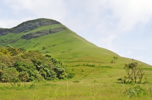 Trek To Kudremukh