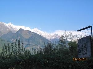 Seeking solitude in Shelapani, a beautiful hamlet in the Himalayas!