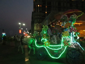 biplab chatterjee Travel Blogger