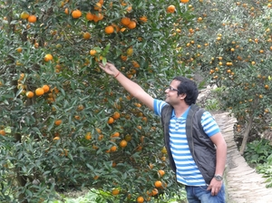Chhota Mangwa – The land of orange orchards and perdurable beauty