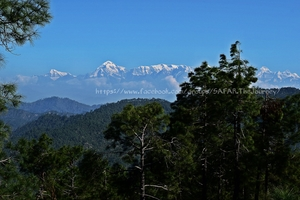 Binsar (Uttrakhand): Silent and Scenic .. !!