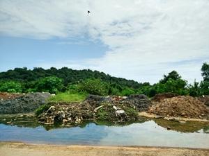 A Day In North Goa