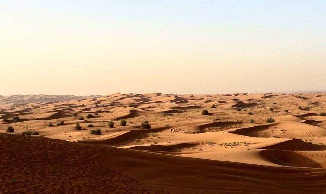 Dubai Calling