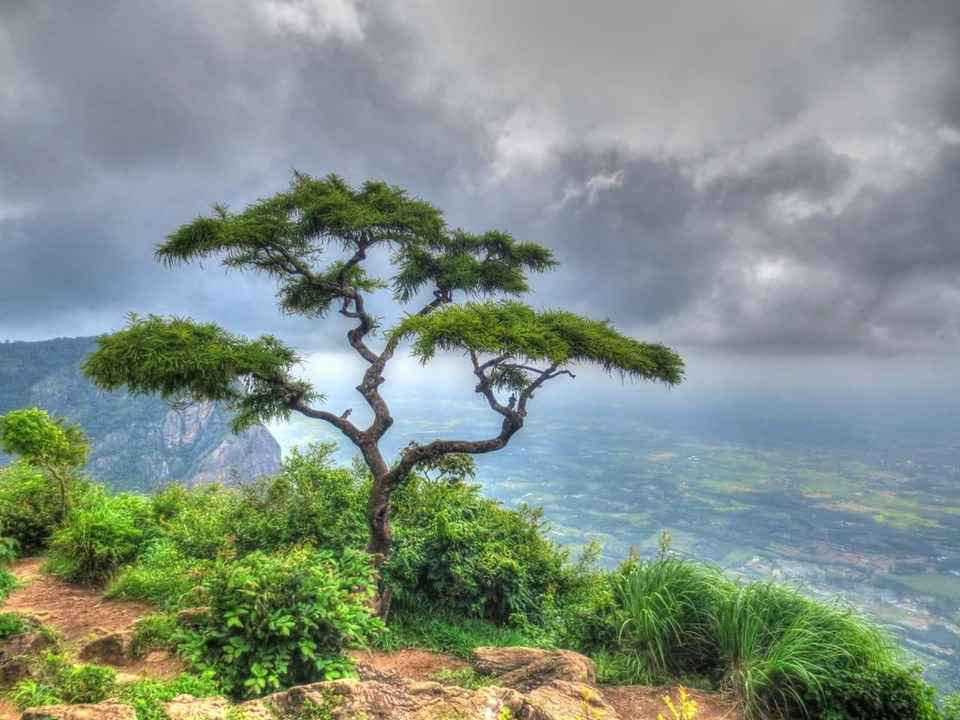 Hidden Hill Stations In South India That Are Summer Goals