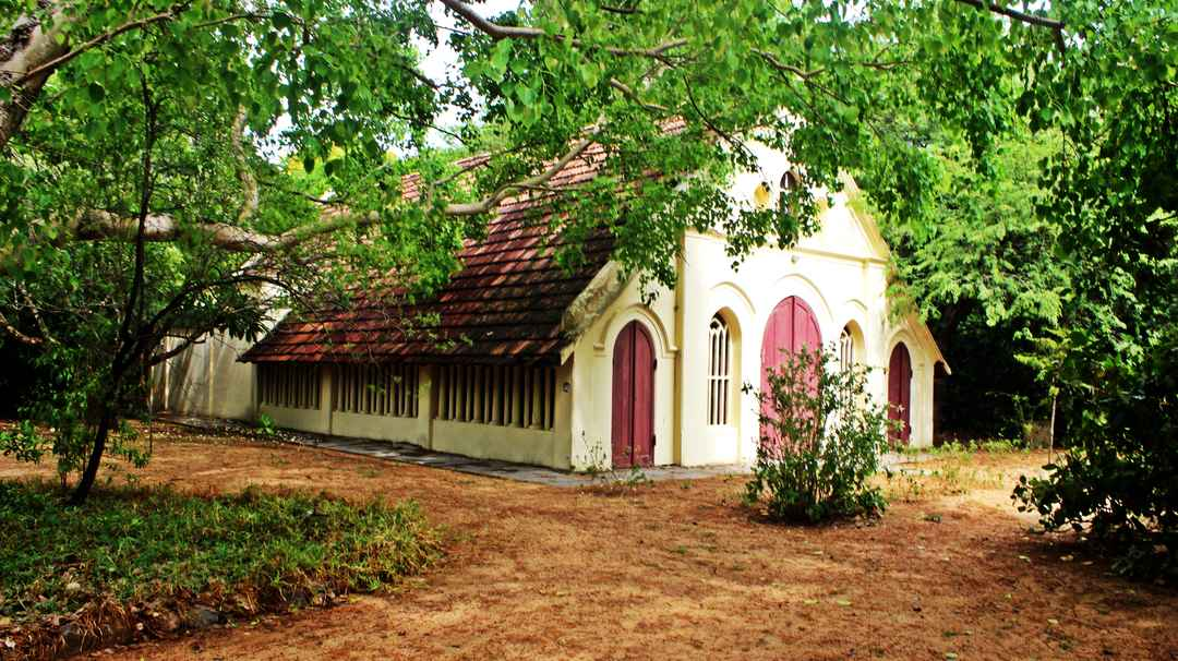 Theosophical Society Chennai: Location, Cost Things to Do - Tripoto